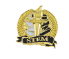 Bright Gold Academic STEM Lapel Pin Lapel Pins