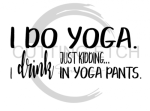 I Do Yoga Just Kidding I Drink in Yoga Pants Alcohol Designs