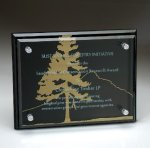 Black Glass Plaque with Glass Layer Black Glass Awards