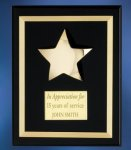 Acrylic Plaque with Brass Star Cast Relief Plaques