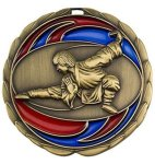CEM Medal -Martial Arts  Color Epoxy Medal Awards