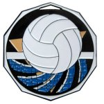 DCM Medal -Volleyball Decagon Medal Awards