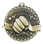 Burst Thru Medal -Martial Arts/Karate  Karate Trophy Awards