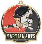 High Tech Medal -Martial Arts  Karate Trophy Awards