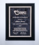 Black High Lustr Plaque with Gray Marble Plate Recognition Plaques