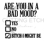 Are You in a Bad Mood? Sassy  Designs