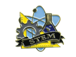 Bright Gold Educational STEM Lapel Pin Scholastic Trophy Awards