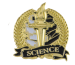 Bright Gold Academic Science Lapel Pin Scholastic Trophy Awards